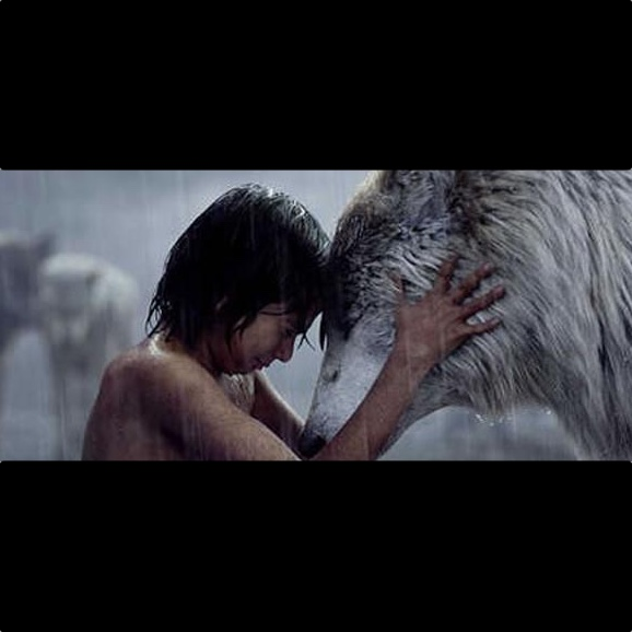 The Jungle Book Unearths Cultural Treasure