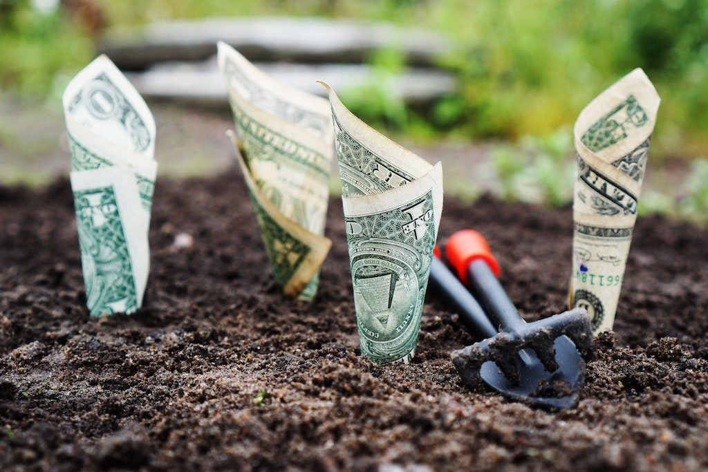 Education Philanthropy, Planting Dollars